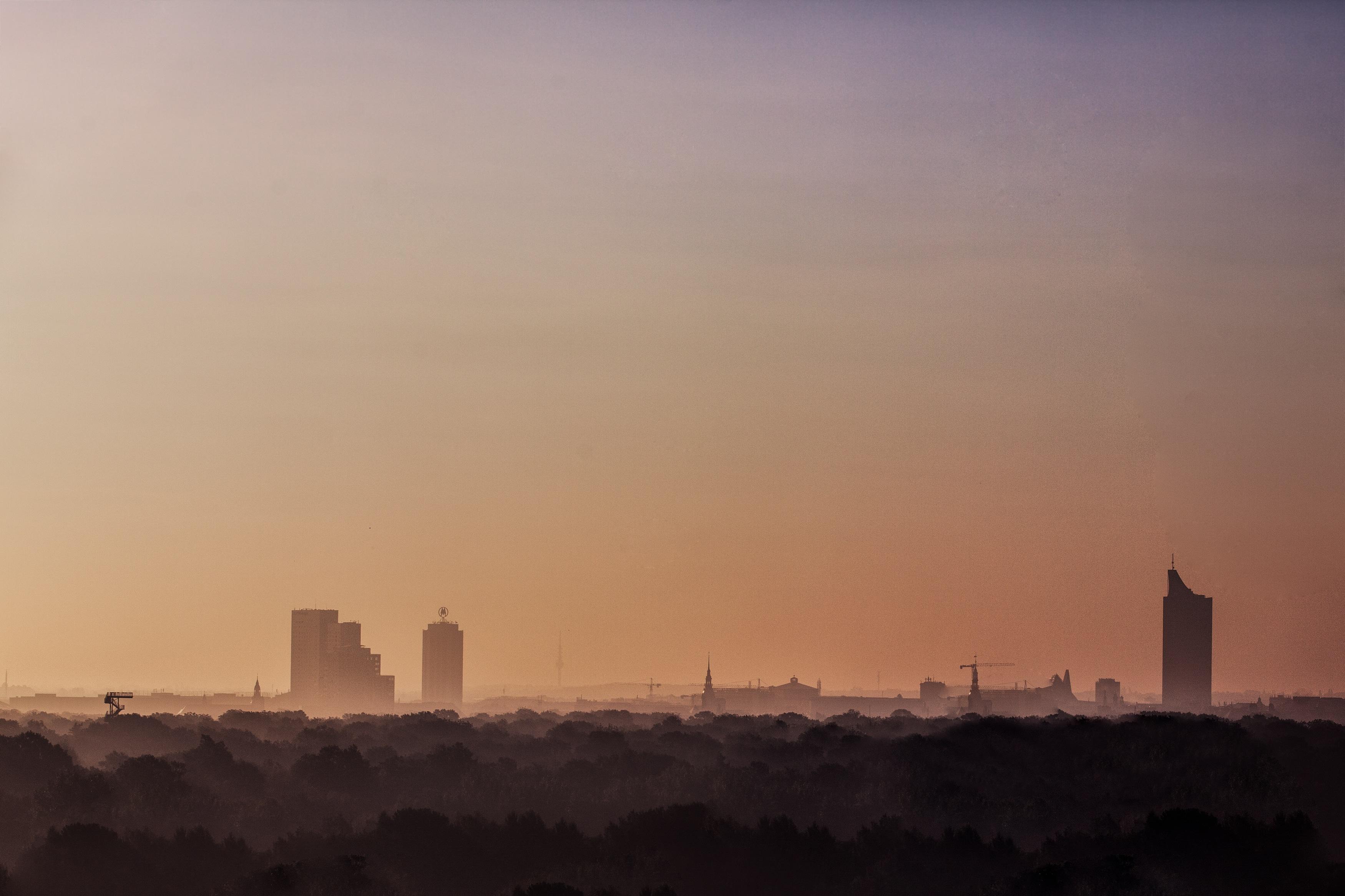 Robin-Sonnenaufgang-3526-Bearbeitet